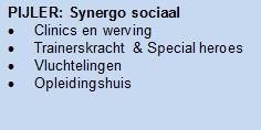 Pijler-Synergo sociaal1